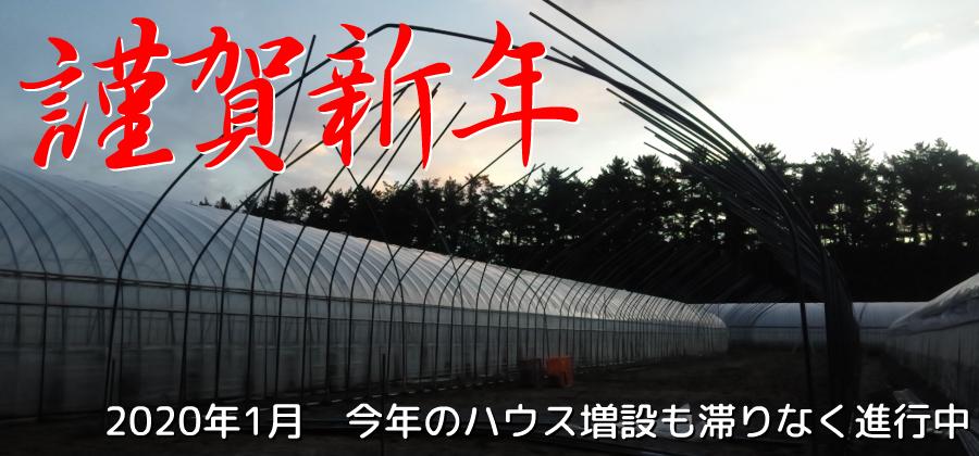 小林直太郎農園|2020年1月 今年のハウス増設も滞りなく進行中