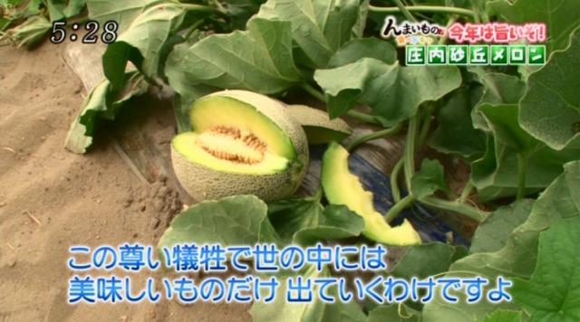 小林直太郎農園|地元TVで特集を組んでいただきました!